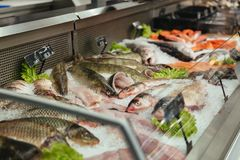 Showcase with raw fish. At the supermarket Stock Photo