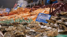 Showcase with Fresh Seafood in La Boqueria Fish Market. Barcelona. Spain. Showcase with Seafood in La Boqueria Fish Market. Barcelona. Spain. Counter with stock footage