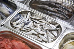 Showcase with seafood. Photo of the showcase with seafood with the located fish in the center Stock Image