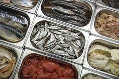 Showcase with seafood Stock Images