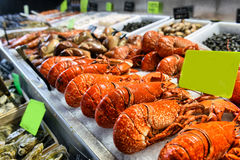 Showcase of seafood Royalty Free Stock Images