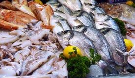 Showcase of seafood Royalty Free Stock Photos