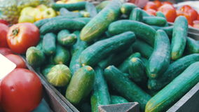 Showcase with tomatoes and vegetables in the grocery market. Trade stock footage