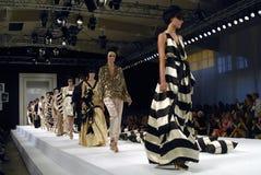 showen för modeller för bigerkattmalene går Arkivfoto