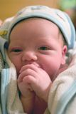 After the Shower. A newborn girl right after the shower Royalty Free Stock Photo