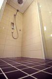 Shower. Tiled shower stall with glass door and hose sprayer royalty free stock photos