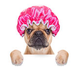 Shower cap Stock Photo