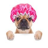 Shower cap stock photo