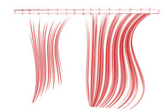 Shower curtain (3D xray red on white) Royalty Free Stock Images