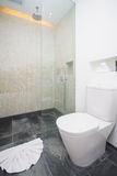 Shower and flush toilet in bathroom Stock Images