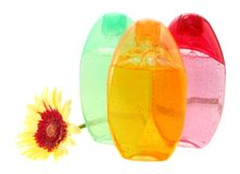 Shower gels and gerbera, isolated. Royalty Free Stock Image