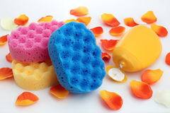 Shower items Royalty Free Stock Image