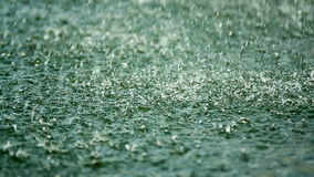 Shower, raindrop falling on the surface of the lake stock video footage