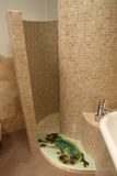 Shower room Stock Photos