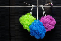 Shower scrubbers. Three colorful shower scrubbers hanging in a bathroom Stock Images