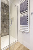 Shower stall in a bathroom Royalty Free Stock Photos