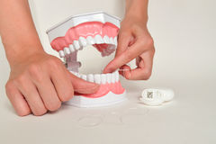 Showing how to use floss, dental care concept Royalty Free Stock Images