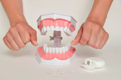 Showing how to use floss, dental care concept Royalty Free Stock Photography