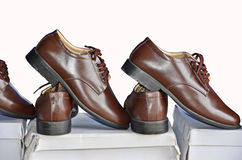Showing new brown shoes. On white paper box Royalty Free Stock Photography