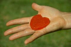 Showing a Punpkin Candy Stock Photography