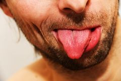 Showing tongue. Mouth closed and tongue sticking out Stock Image