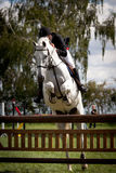 Showjumping competition Stock Images