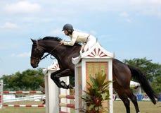 Showjumping del caballo - PremierCup 2010 Foto de archivo