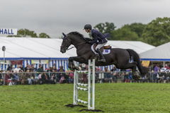 Showjumping at the Edenbridge and Oxted Agricultural show 2015 Royalty Free Stock Photography