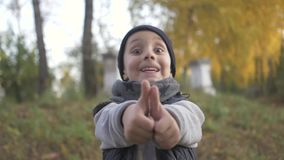 Shows a gesture like a finger in the top. Smiling little baby boy playing in the park. Autumn. thumb stock footage