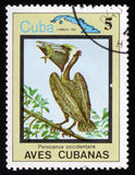 Shows Pelicanus occidentalis and map of Cuba, circa 1983 Royalty Free Stock Photos