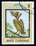 Shows Pelicanus-occidentalis und Karte von Kuba, circa 1983 Lizenzfreie Stockfotos