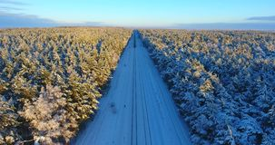 Showy Aerial shot of winter train in forest from above. Aerial shot of winter train in forest. Aerial footage. Klaipeda, Lithuania stock video footage