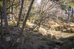 Shoyoen arbeta i trädgården edo stil i den Rinnoji templet på Nikko, Japan Royaltyfria Bilder