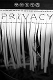 Shred. A paper document with the word privacy, partially shredded in a shredding machine Stock Image