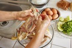 shredded цыпленок Стоковая Фотография