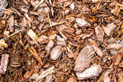 Shredded bark texture. Wooden mulch ground's fragment as an abstract background composition Royalty Free Stock Photos