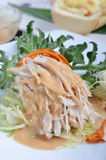 Shredded boiled chicken with  sauce Royalty Free Stock Image