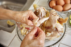 Shredded chicken Stock Image