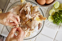 Shredded chicken Stock Photo