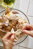 Shredded chicken Royalty Free Stock Images
