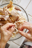 Shredded chicken. For the ingredient for Soto, the traditional Indonesian chicken soup Stock Image