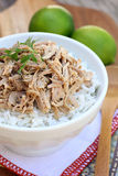 Shredded Cuban Pork Stock Images