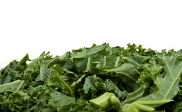 Shredded Curly Kale Royalty Free Stock Image