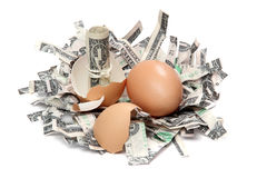 Shredded dollar bank notes and broken eggshell Royalty Free Stock Photos