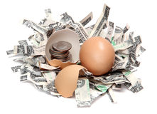 Shredded dollars and eggshell with coins Stock Photo