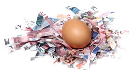 Shredded european currency with egg Stock Photography