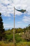 Shredded flag of Greece Royalty Free Stock Image