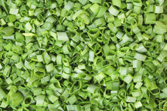 Shredded green onions. Close-up as background Stock Image