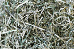 Shredded Money #3 Royalty Free Stock Images