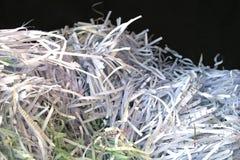 Shredded paper stock image